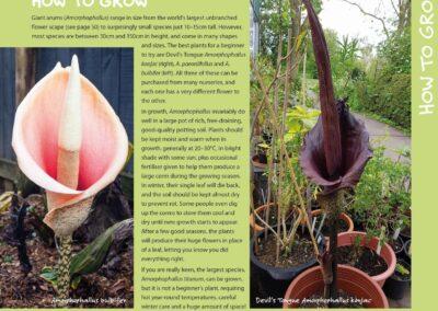 Spectacular Plants (20)