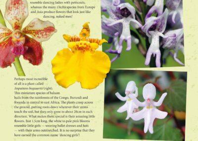 Spectacular Plants (5)