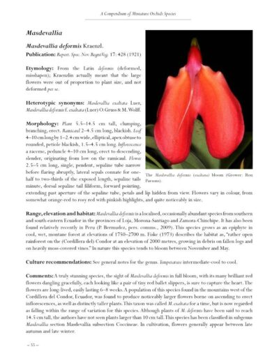 A Compendium of Miniature Orchid Species - Second Edition (3)